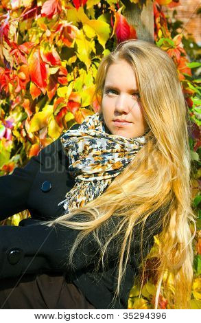 Portrait Of The Beautiful Girl In Autumnal  Season