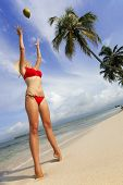 image of beach hat  - Woman on a tropical beach stretching up to catch a green coconut - JPG