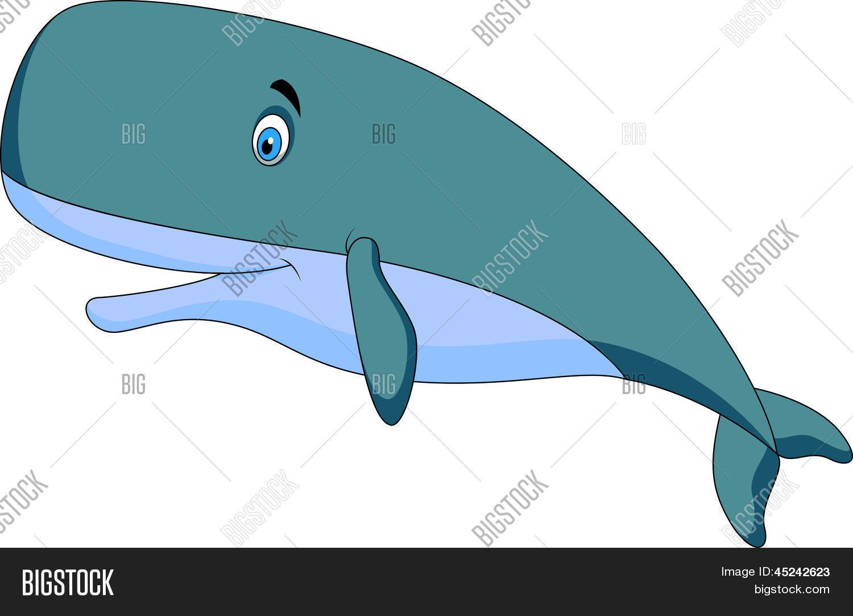 cute whale cartoon vector u0026 photo bigstock