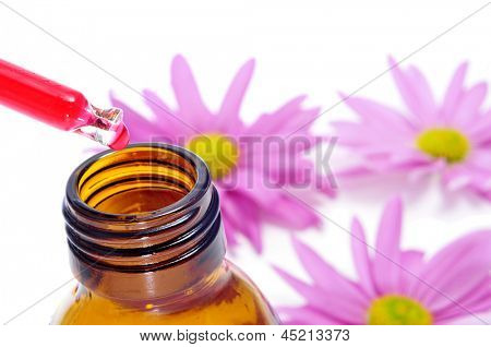 a dropper and a bottle, and some pink chrysanthemums on a white background