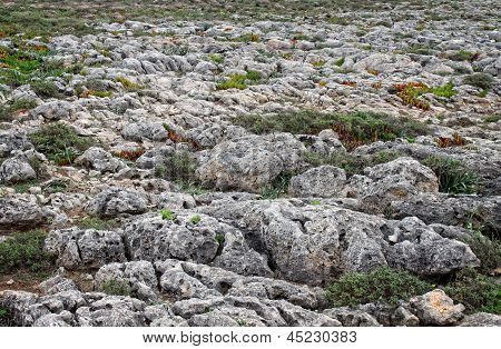 Roughy Rocky Terrain In Sagres, Portugal
