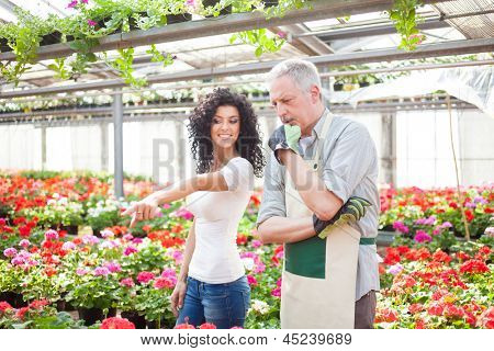 Woman asking for a plant to a clerk