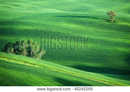 Paisagem paisagem rural na região de Toscana, Itália