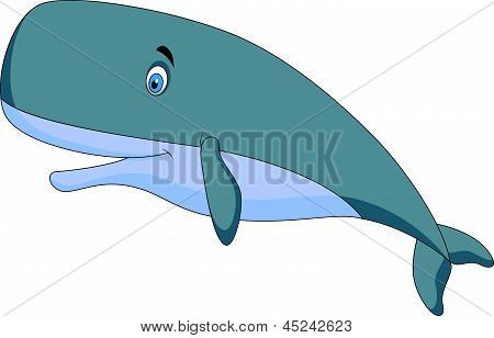 !!! sperm whale cartoon salope