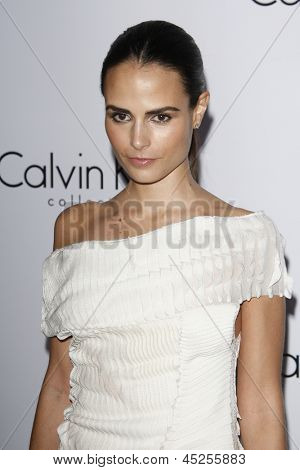 LOS ANGELES - JAN 28: Jordana Brewster at the Calvin Klein Collection & LA Nomadic Division 1st Annual Celebration For L.A. Arts Monthly + Art LA Contemporary on January 28, 2010 in Los Angeles, CA