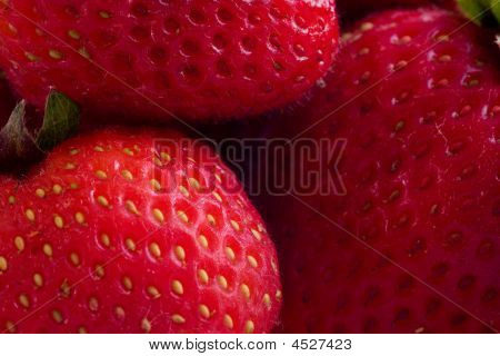 Strawberries Macro