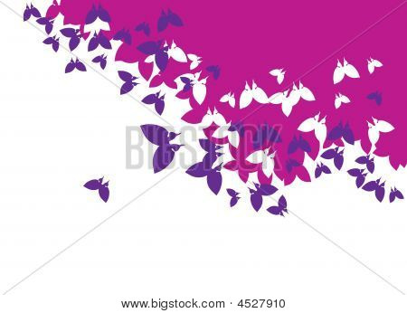 Background_butterfly
