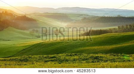 Countryside, San Quirico d�´Orcia, Tuscany, Italy