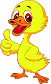 picture of baby duck  - Vector illustration of Cute baby duck cartoon thumb up - JPG