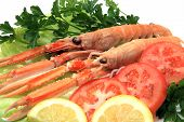 image of norway lobster  - Plate of Norway lobster dinner in a restaurant - JPG