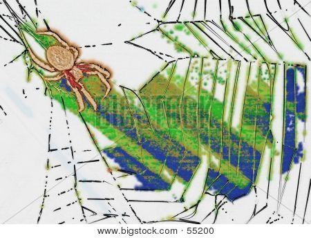 Stylised Web...