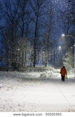 Winter night scene in city