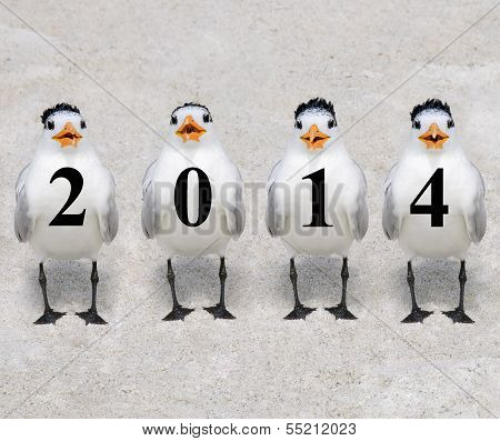 2014 Terns