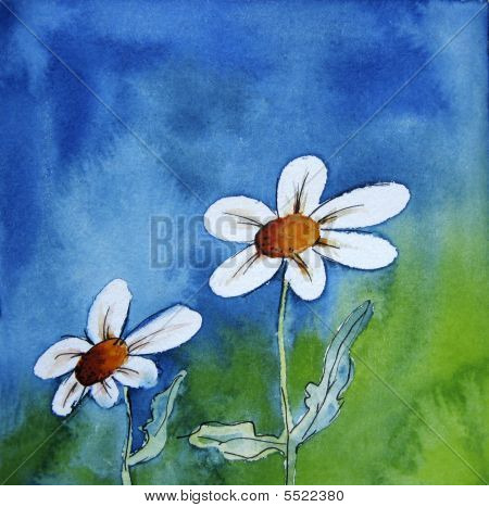 Two White Flowers On Blue