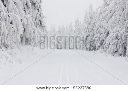 winter landscape, Orlicke Mountains, Czech Republic