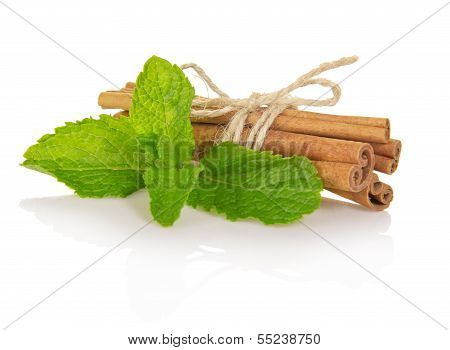 Spearmint with cinnamon