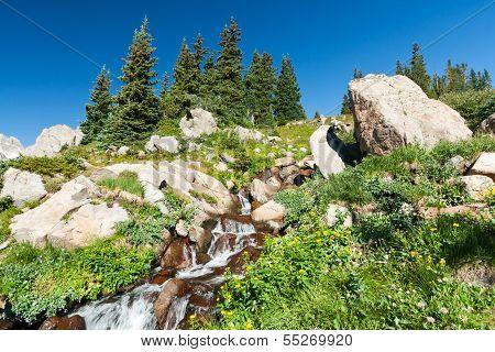 Colorado Waterfall And Wildflowers Landscape Scene
