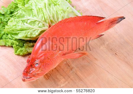 Red Fish On Wood