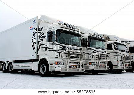 Fleet Of Trucks In Winter
