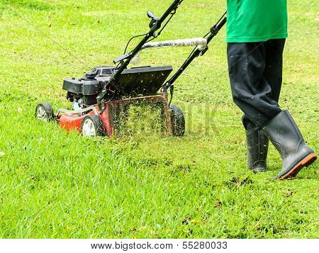 Worker Mowing Grass