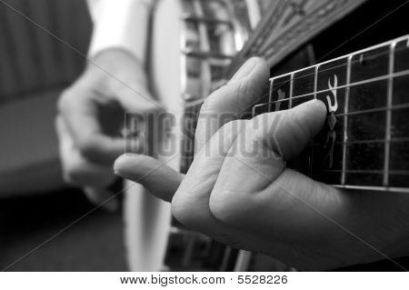 Colheita de banjo