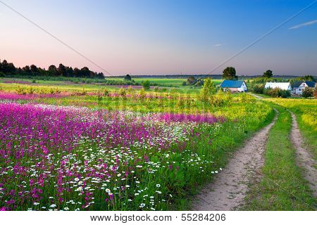 Landscape With A Blossoming Meadow, The Road And A Farm