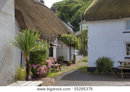 Seaside Cottages, Devon
