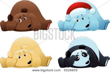 Brown Bear, Polar Bear And Panda