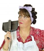 Dust Pan Housewife