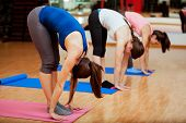 image of toe  - Group of young women trying the big toe pose at their yoga class in a gym - JPG