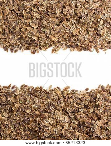 dried dill seeds isolated on white background