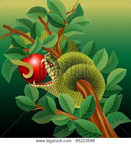 snake in tree biting red apple
