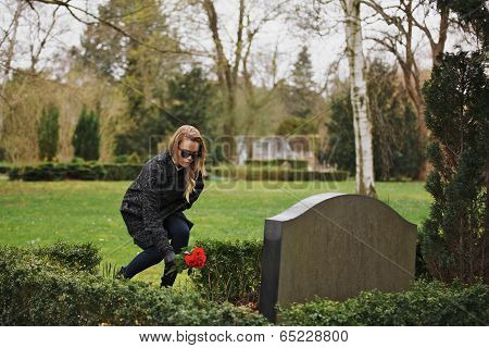 Woman Placing Flowers At Gravestone In Cemetery