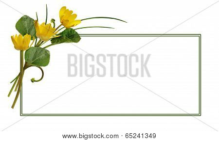 Spring Wild Flowers And A Frame