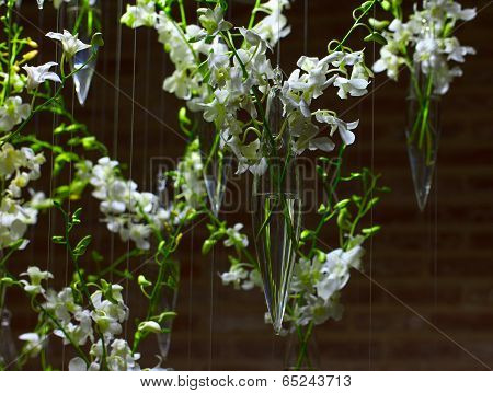 White Orchid Decorations