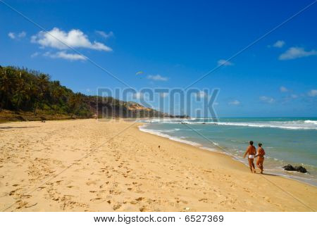 Beautiful Beach At Praia Do Amor Near Pipa Brazil