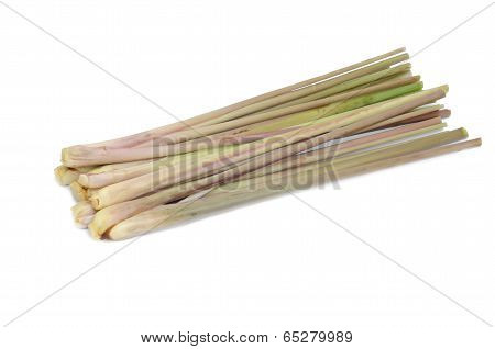 Citronella Grass Isolated On White Background