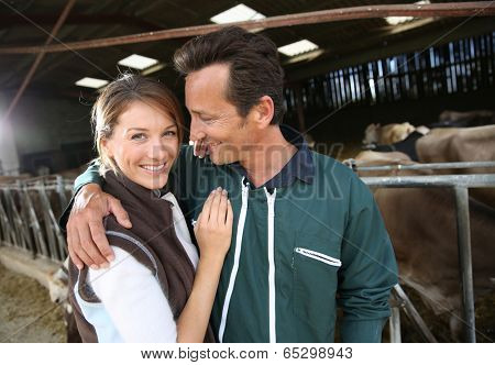 Cheerful couple of breeders standing in barn