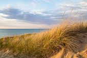 pic of sea oats  - Sand dune and sea oats set against a blue water horizon - JPG