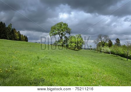 Sunny meadow with dark thunderclouds