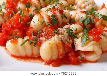 Delicious Gnocchi With Tomato Sauce On A White Plate. Macro.