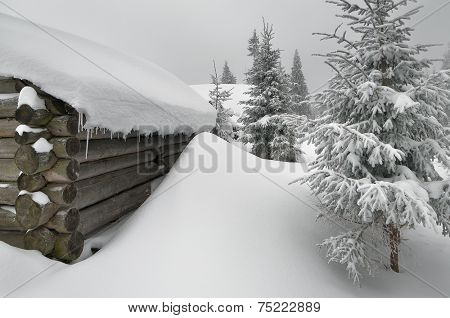 Winter in the village. Old wooden house in the snow