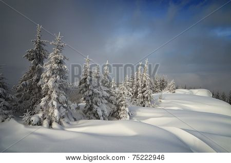 Christmas landscape. Snowdrifts in the mountain forest