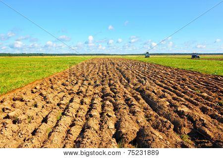 Farmer field