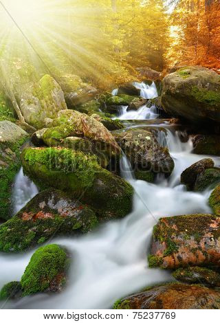 Autumnal landscape with mountain creek in the National park Sumava - Czech Republic