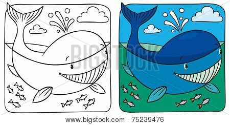 Little Whale Coloring Book