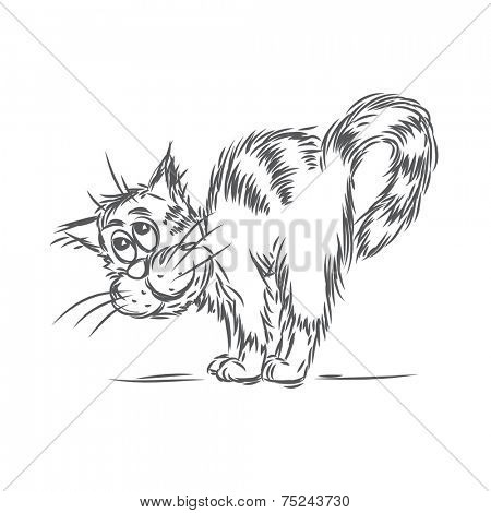 Cat caress. Vector sketch.