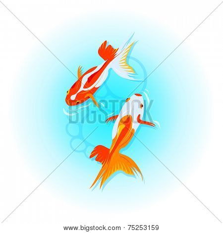 Pair of goldfishes swimming in the stone pond