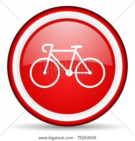 bicycle web icon