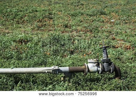 Irrigation Pipe